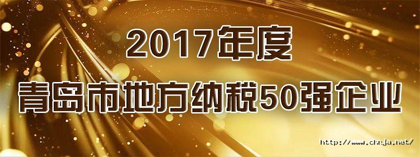 2017纳税50强 850.jpg